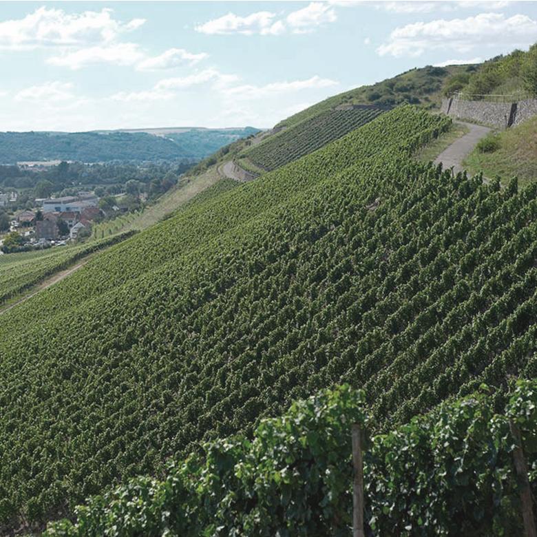 Monzinger-Halenberg-riesling-grand-gru-nahe-germany