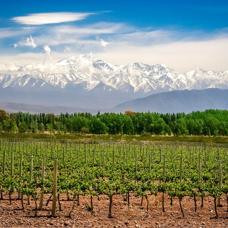 argentine-mendoza-valle-de-uco