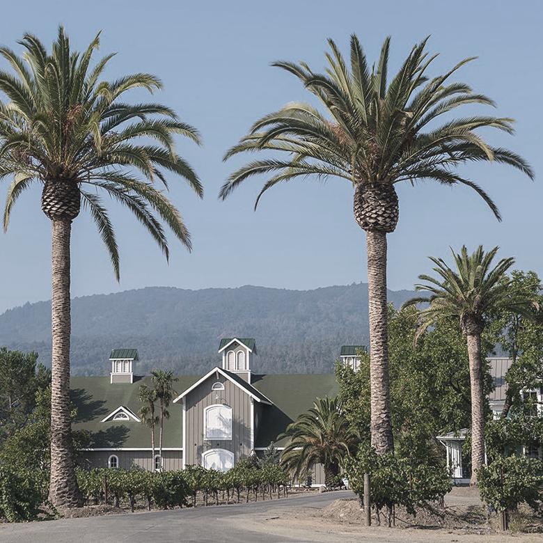 corison-vinyard-napa-valley-cabernet-sauvignon-warehouse
