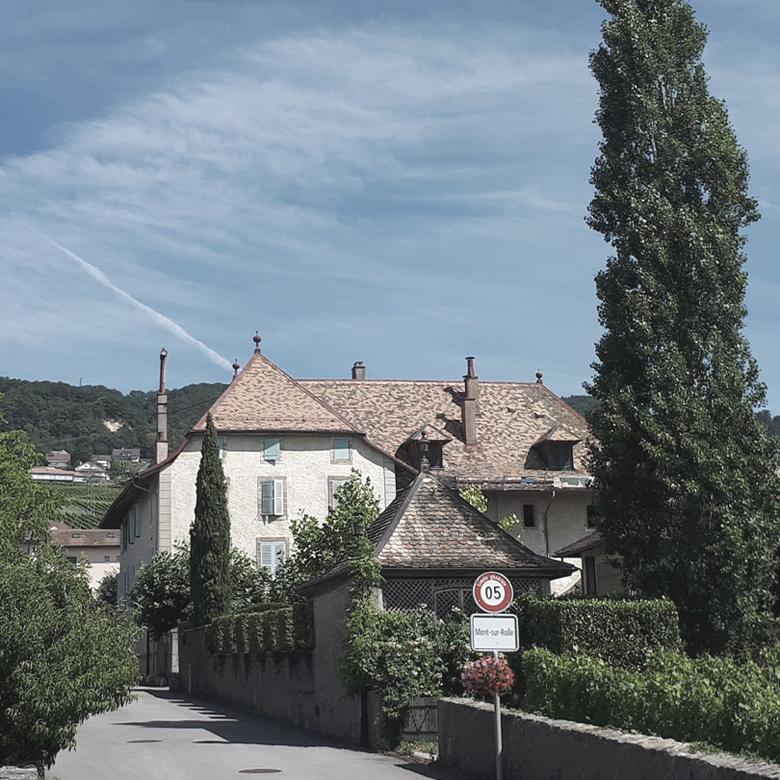 mont-sur-rolle-domaine-maison-blanche-chasselas-suisse-wine