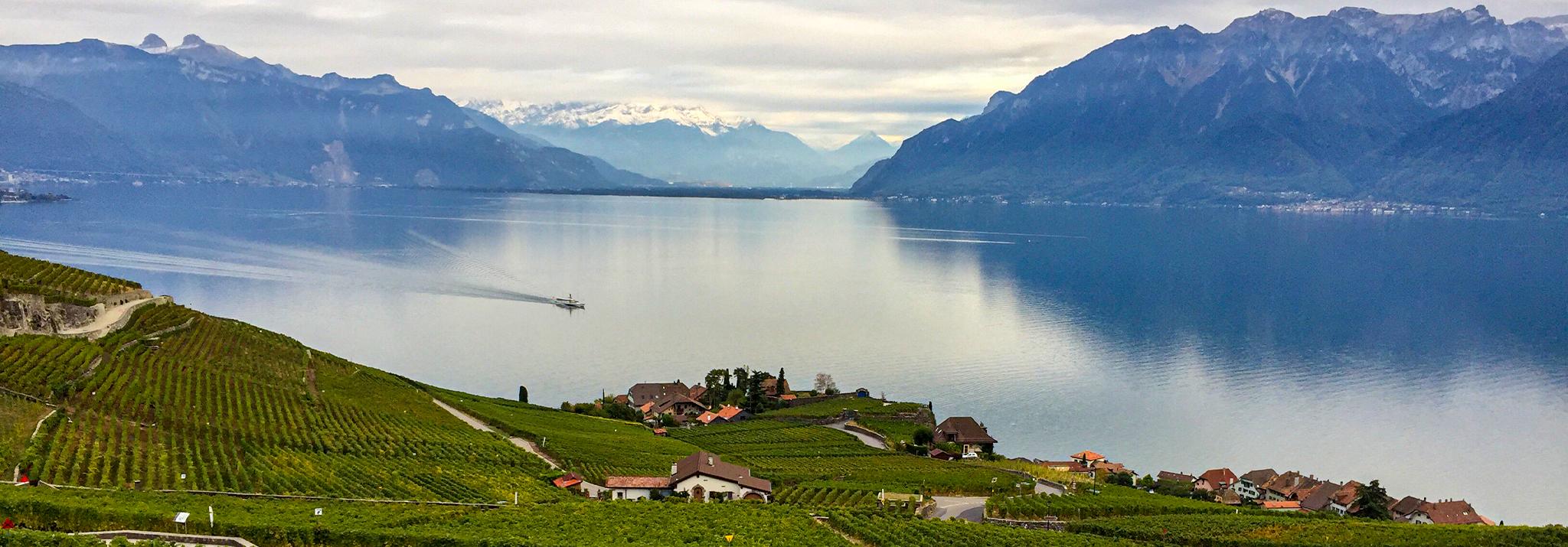 mont-sur-rolle-lac-leman-domaine-maison-blanche-switzerland-wine