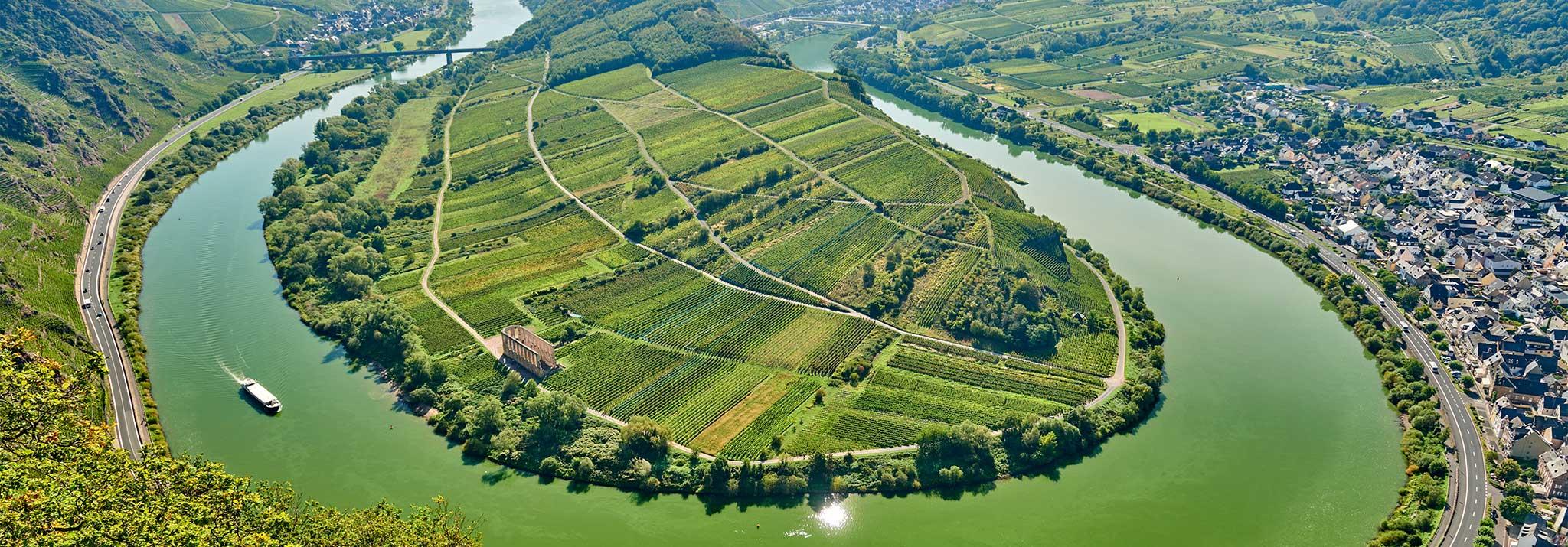 nik-weis-moselle-riesling-wine-germany