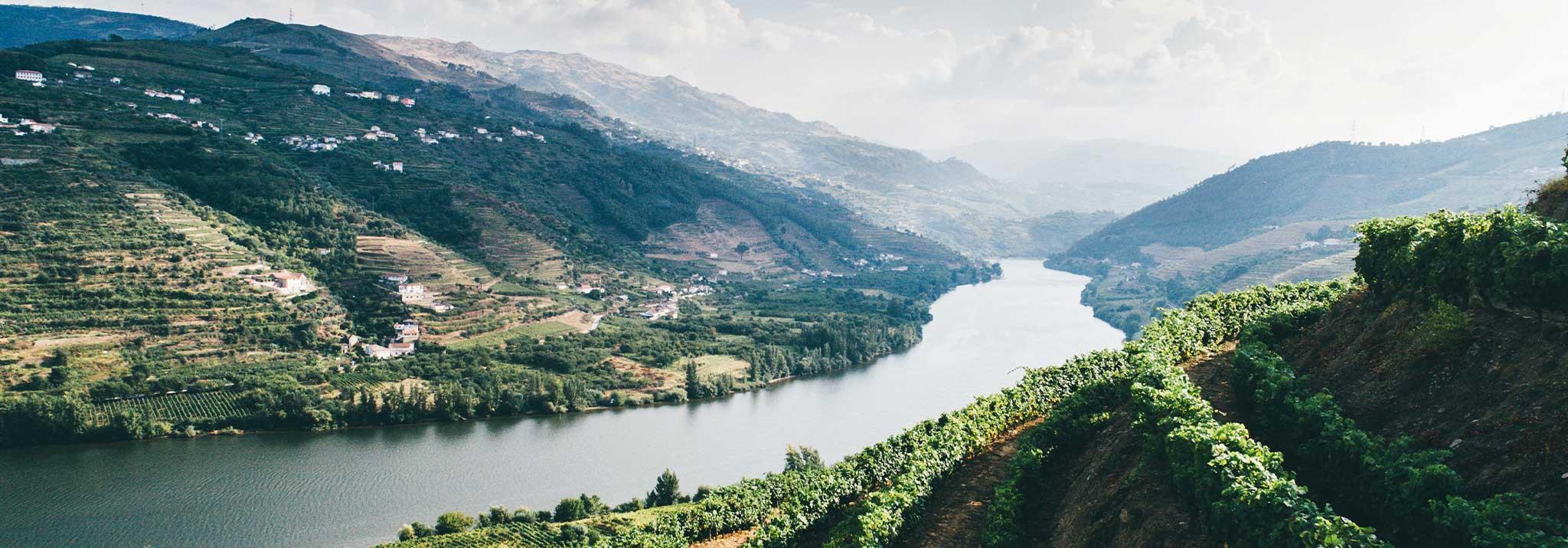 quinta-do-crasto-douro-wines-portugal