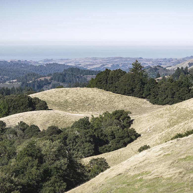 santa-rita-hills-california-rajat-parr-wines