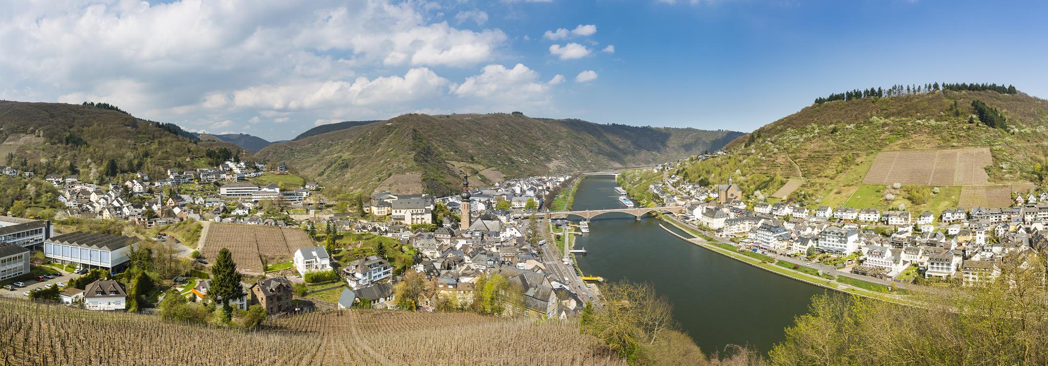 vineyard-moselle-dr-loosen-riesling-germany
