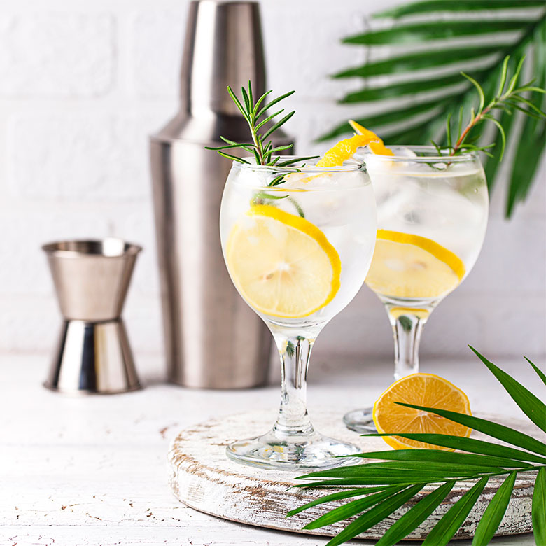 gin-tonic-cocktail-with-lemon-jin