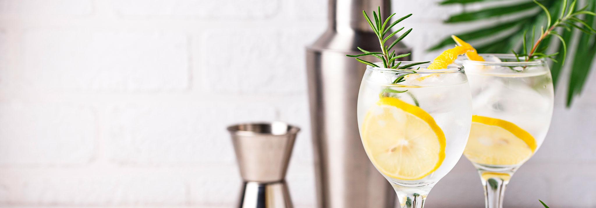 gin-tonic-cocktail-with-lemon-spiritueux